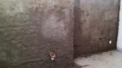 Sanace mokrého zdiva
